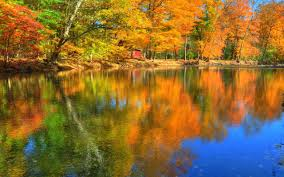 Cottage Houses Lakes Autumn Colorful Grass Peaceful Lake Colors Trees Nature