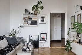green living space coco lapine designcoco lapine design