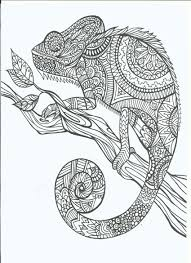 coloring pages for adults with hidden objects google search