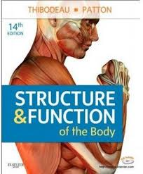 Human Anatomy And Physiology Textbook Online 9780323079310 Anatomy U0026 Physiology Online For Structure