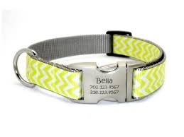 customized collars personalized collars personalized