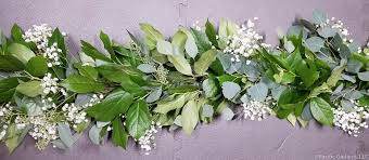baby s breath fresh baby s breath salal seeded eucalyptus garland by pacific
