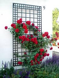 wide wall trellis poundbury garden artisans llc