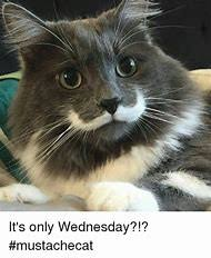 Wednesday Meme - best 25 ideas about wednesday meme find what you ll love