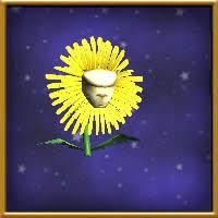 house dandelion wizard101 wiki