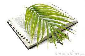 palm for palm sunday religion whiplash
