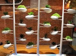 self watering indoor planters 11 best self watering planters images on pinterest vegetable
