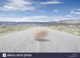 tumbleweed empty road with tumbleweed stock photo royalty free image