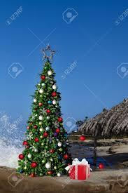 christmas tree on beautiful tropical beach thatched palm palapa