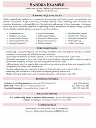 Skills Summary Resume Sample Professional Curriculum Vitae Writers Website For Cover