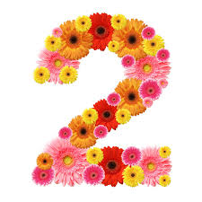 numerology reading free birthday card numerology secrets of your birthday 2nd 11th 20th 29th number