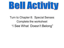 special senses eye and ear ppt download