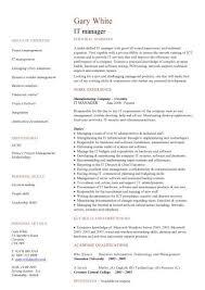it management resume examples senior director resume restaurant