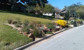 austin native plants greeneraustin com
