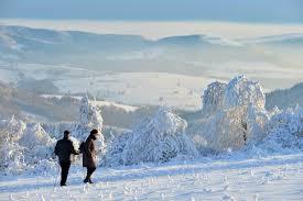 El Dorado Bad Homburg Auf Der Piste Dem Eis Oder Durch Den Wald Winter Highlights In