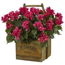 indoor flowering plants nearly natural indoor bougainvillea flowering plant in rustic wood