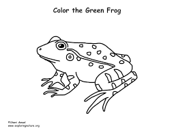 Frog Green Coloring Page Green Coloring Page