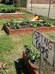 Urban Vegetable Garden by Urban Farming Growing Food In A Sprawling City National