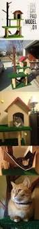 Cool Cat Furniture Best 25 Diy Cat Tree Ideas Only On Pinterest Diy Cat Tower Cat