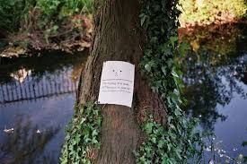 waterloo gardens on tree puns googly used in a