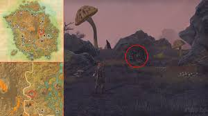 Deshaan Treasure Map Eso Morrowind Lost Library Quest Ancestor Spirit Answers