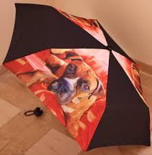 boxer dog 3 weeks pregnant boxer dog breed umbrella it looks exactly like roxie