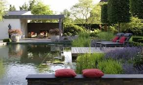 Is A Backyard Pond An Ecosystem Natural Pools Or Swimming Ponds U2022 Nifty Homestead