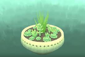 succulent facts there is a video game where you just take care of succulents