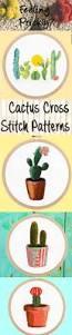 succulent kits best 25 cactus pattern ideas on pinterest wallpapers cactus