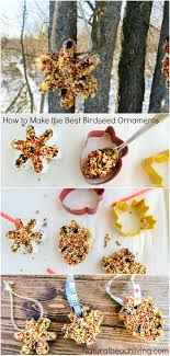 how to make the best birdseed ornaments living