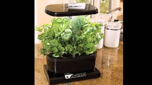 miracle gro aerogarden harvest on sale at best price with gourmet