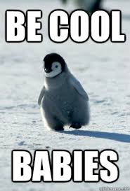 Cute Penguin Meme - be cool babies be cool baby penguin quickmeme