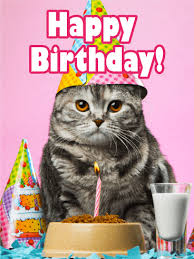 Cat Birthday Cards Birthday Party Cat Card Birthday Greeting Cards By Davia