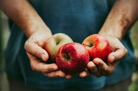 the best foods for a diabetic diet reader u0027s digest reader u0027s digest