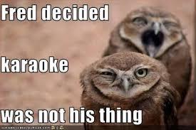 Funny Karaoke Meme - image funny pictures one owl hates karaoke jpg mysims wiki