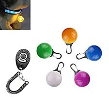 dog collar lights waterproof dwe 5pcs dog collar light waterproof colorful safety clip on dogs
