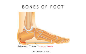 Planters Fasciitis Surgery by How A Foot Massage Can Relieve Your Plantar Fasciitis Pain Foot
