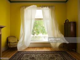 lace curtain blowing out of window stock photo getty images