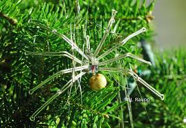 tinsel and the spider bug of the week