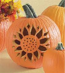 sunflower pumpkins idea for my art project doesn u0027t include a