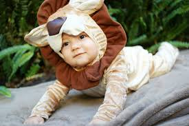 Halloween Lion Costume Collection Lion Halloween Costume Baby Pictures Baby Toddler