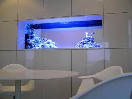 accessories surprising images about fish tank tanks salt water