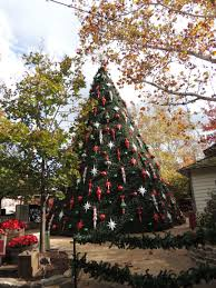 winterland inc commercial trees