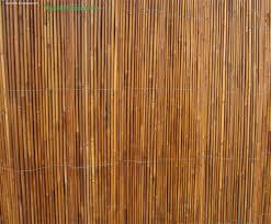 bamboo creasian quality fence bamboo fencing california bamboo
