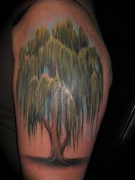 willow tree by bobeck on deviantart