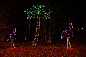 Lights At The National Zoo zoolights powered by pepco begins nov 24 at the smithsonian u0027s