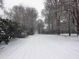 lexus ls in snow oregon state university of oregon delay start of winter term due