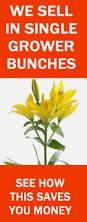 Discount Flowers Bulk Discount Flowers Buy Wedding Flowers Online Free Flower