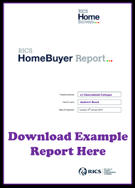 condition report template rics homebuyers report or building