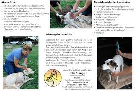 Bad Homburg Wetter Hundeschule Bad Homburg Martin Rütter Dogs Bad Homburg